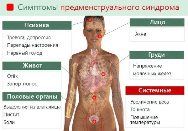 Частое мочеиспускание перед месячными: норма или патология