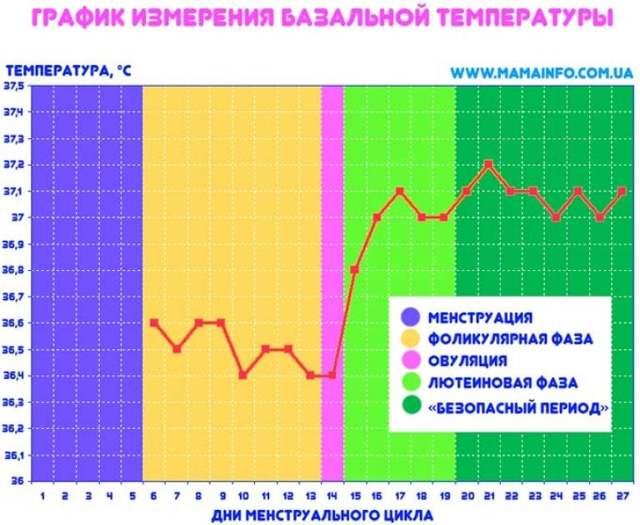 Эстрадиол: норма у женщин в разные фазы цикла и периоды жизни