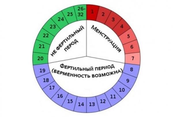 Рассчитать пол ребенка по овуляции и другими методами